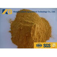 Best Horse Dog Pig Fish Feed Additives Promotes Lipid Metabolism Increase Digestibility wholesale