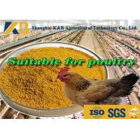 Best Direct Additive Grower Finisher Chicken Feed / Meat Chicken Feed 65% Protein Content wholesale