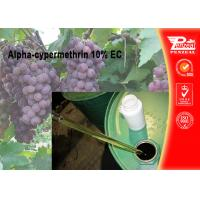 Best Alpha-cypermethrin 10% EC Pest control insecticides 67375-30-8 wholesale