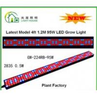 Cheap High Effective LED Tube Grow Lights Hydroponic For Plant , Long Life Time for sale