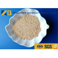 Best Low Sugar Content Rice Protein Powder , Healthy Protein Additive For Diet Cattle wholesale