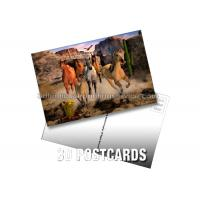 Best Pantone Color Printing PET 3D Lenticular Postcard / 3D Changing Pictures For Kids wholesale