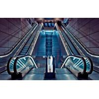 Best Economical VVVF Drive Business Escalators , Fuji Indoor Escalator wholesale