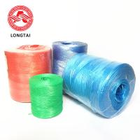 Best 2mm Agriculture UV Treated Hay Baling Twine with ISO Certificate High Tenacity PP baler twine wholesale