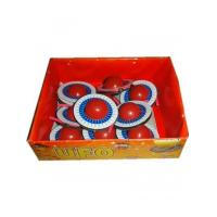 Quality UFO Ground Spinner Fireworks wholesale