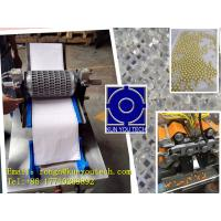 Best Mold Testing Machine For Soft Capsule And Paintball Encapsulation wholesale