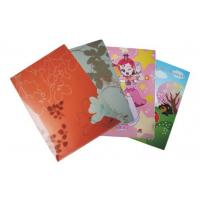 China Promotional PP File Holder (HWDH-03) on sale