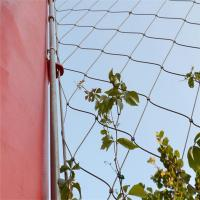 Best Stainless Steel Cable Mesh As Plant Climbing wholesale