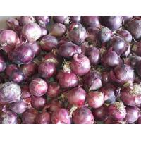 Buy cheap china 2014 Fresh red onion from wholesalers