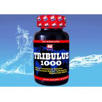 Quality Tribulus 1000 --- Tribulus Terrestris Capsule for Natural Testosterone , Sports Nutrition Supplements for Bodybuilding wholesale
