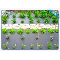 Best Eco-friendly 30gsm Black Color Non woven weed control fabric For Vegetables wholesale