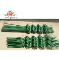 Cheap Green Spiral Garden Plant Stakes for sale