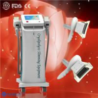 Best Non-surgical weight loss Cryolipolysis Fat Freeze Slimming Equipment Fat melting wholesale