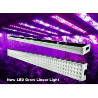 Cheap 4 Feet Linear Hydroponic Led Grow Lights Bar 120w For Greenhouse , 50Hz-60Hz for sale