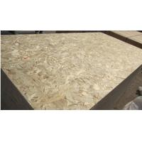 Details of 1220 2440 1250 2500mm waterproof osb board for Osb thickness for roof