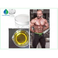 CAS 58-20-8 Muscle Building Steroids , Testosterone Cypionate Powder Fitness