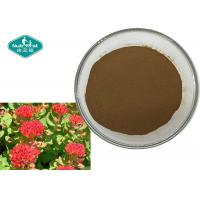 Best Rhodiola Rosea Extract Salidroside 1.0 - 3.0% Rosavin 1.0 - 3.0% wholesale