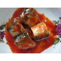 Best Pure Mackerel Canned Fish In Tomato Sauce / Brine / Oil Excellent Fine Taste wholesale