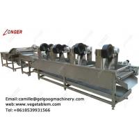 Best Factory direct price fruit and vegetable washer and dryer line for sale wholesale