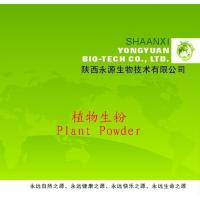 China Shaanxi Yongyuan Bio-Tech supply Herbal Powder,Achyranthes aspera Powder on sale