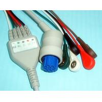 Snap Type 10 Pin Datex 5 Lead ECG Cable With Leadwires High Density