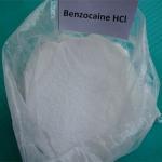 Best Steroid Powder Source Anesthetic Anodye Benzocaine HCL 23239-88-5 Benzocaine Hydrochloride wholesale