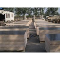 Best birch constrution plywood  wholesale