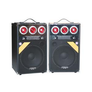 Best Professional Active Speaker (C-800A) wholesale