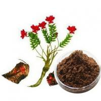 China Plant extract powder Rhodiola Rosea Bark Extract Brown-red powder natural food supplements on sale