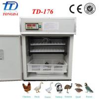 Best CE Approved Incubator for eggs wholesale