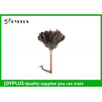 Cheap Professional Home Cleaning Tool Ostrich Feather Duster Bamboo Handle for sale
