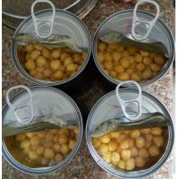 Best Mild Taste Chickpeas Canned Garbanzo Beans Extremely Versatile Ingredient wholesale