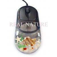 Best Novel Real Sea Life Amber Computer Mouse -5 wholesale