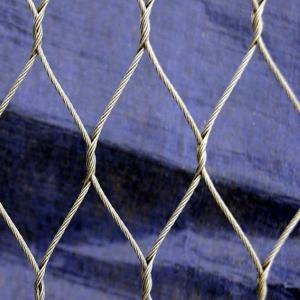 Best Premium Qulity Stainless Steel Wire Net wholesale
