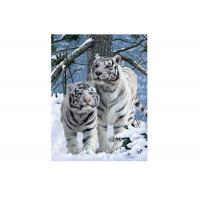 Best Vivid Tiger Image 3d Lenticular Image For Home 0.76mm Thickness 3d Animal Pictures wholesale