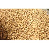 Buy cheap Fresh Vegetable Long Organic Potatoes Contains Vitamins And Minerals, Fine from wholesalers