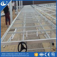 Best Greenhouse rolling bench wire mesh top movable growing tables seedbed wholesale