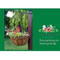 Best Black Hanging Flower Baskets , Planted Hanging Baskets With Coco Liner wholesale