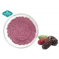 China Freeze Dried Mulberry Fruit Powder Fruit and Vegetable Powder Supplement for Beverage on sale