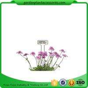 Cheap Decorative Plant Garden Landscape Markers / Garden Plant Marker for sale