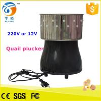 Best Mini chicken plucker / quail plucker / duck plucking machine wholesale