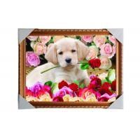 Best Customised PET Pictures 3D Lenticular Printing Service Stock 3D Image PS Frame wholesale