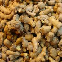 Buy cheap dry Fresh Ginger from wholesalers