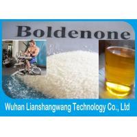 nandrolone base half life