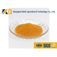 Cheap 60% Content Corn Protein Powder / Animal Feed Additives For Shrimp Breed for sale