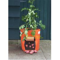 Best PROMOTION GROW BAG,SISE IS FROM 2-15 GALLON COLORS ARE OPTIONED,SAMPLE IS FREE WE HAVE PROMOTION TIMELY wholesale