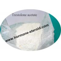 Best 6157-87-5 Primobolan Steroids Trestolone Acetate Bodybuilding Sex Enhancement wholesale