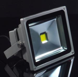 Best 20W Waterproof Cold White 6000 - 7000K Color Temperature Safe Outdoor Led Flood Light Bulb wholesale