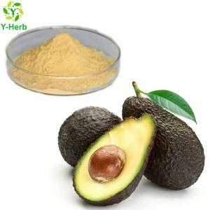 Best Factory supply bulk avocado seed extract capsules powder avocado extract wholesale