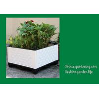 Best Plastic Garden Square Planter Boxes , Outdoor White Rectangular Planter Box wholesale